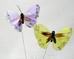 9cm FEATHER BUTTERFLIES NATURAL