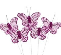 BUTTERFLY 6cm SHEER -Pink