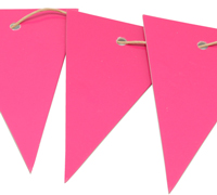 CARBOARD BUNTING TAG-Hot Pink