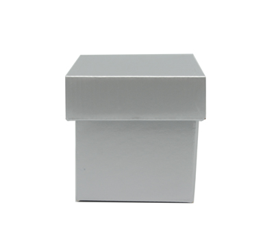 GLOSS BOX & LID-Silver