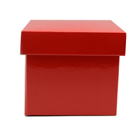 MINI GIFT BOX & LID PACK-Gloss Red