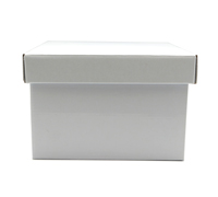 SML GIFT BOX & LID-Gloss White
