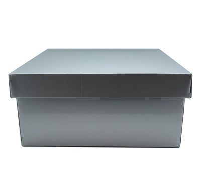 LGE GIFT BOX & LID-Silver