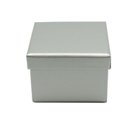 CASEMADE CUBE - Silver