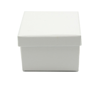 CASEMADE CUBE - White