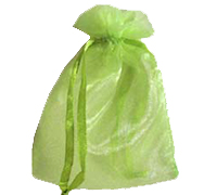 ORGANZA BAG SML-Apple